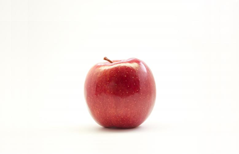 《犬に与える食べ物》犬にりんごは与えても大丈夫?
