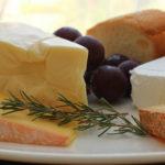 《食べ物》犬にチーズは与えても大丈夫?