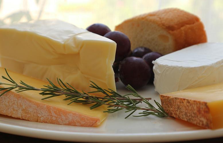 【食べ物】犬にチーズは与えても大丈夫?9つの心得