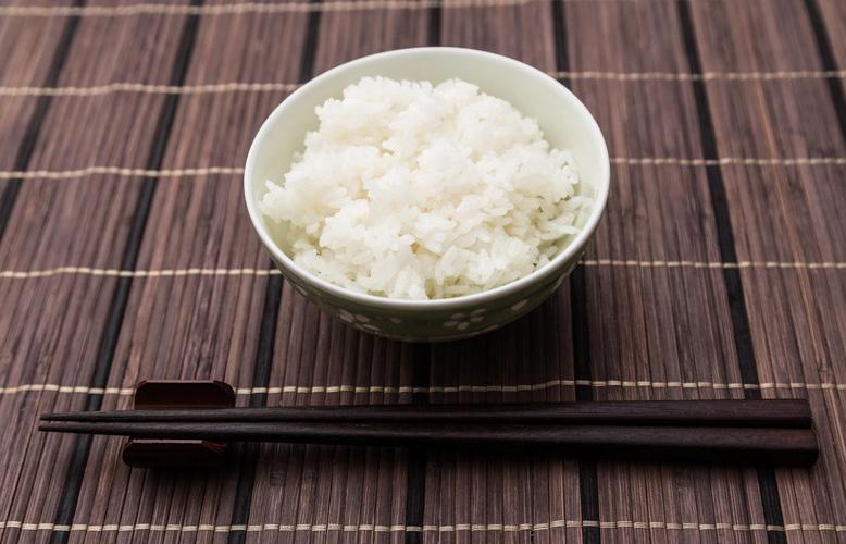 【食べ物】犬にお米は与えても大丈夫?